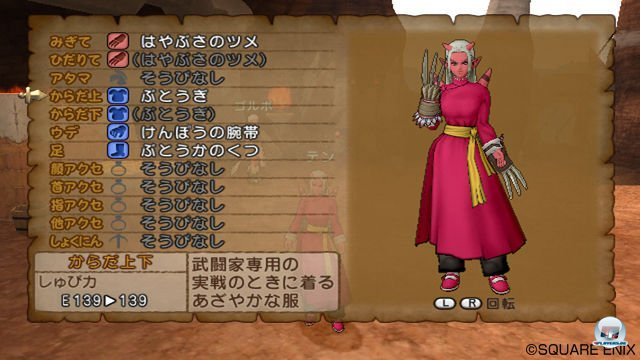 Screenshot - Dragon Quest X Online (Wii) 2292972