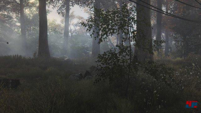 Screenshot - The Vanishing of Ethan Carter (PlayStation4) 92510183
