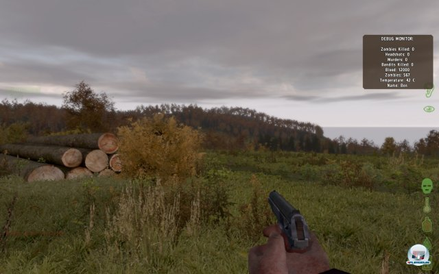 Screenshot - ArmA II (PC) 2367577