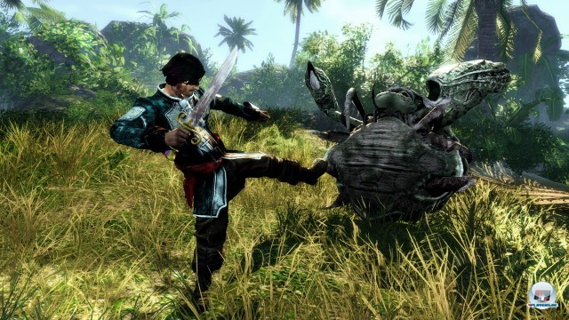 Screenshot - Risen 2: Dark Waters (PC) 2222777